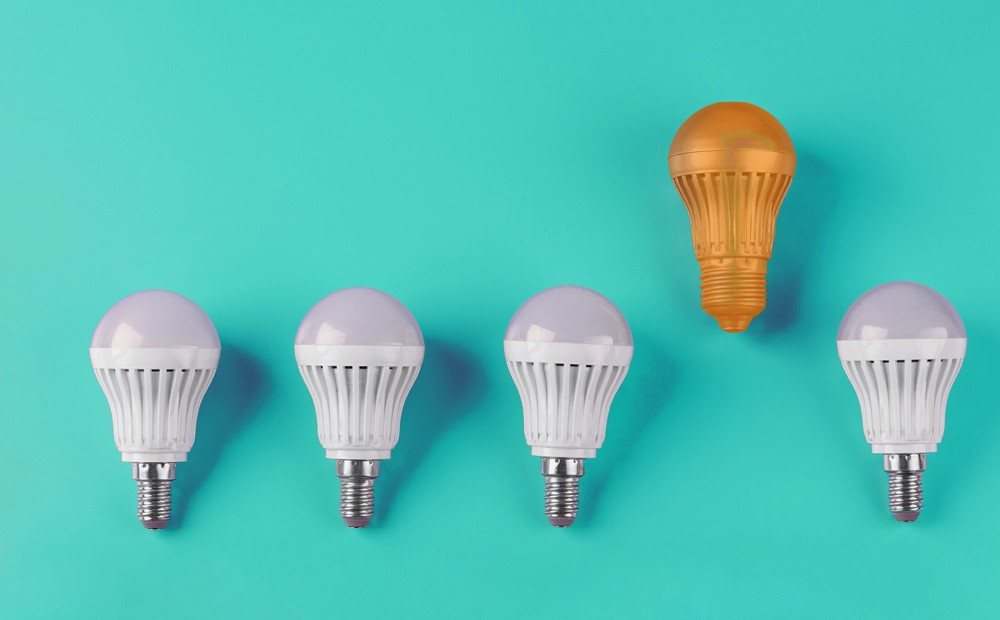 Image of sustainable lightbulbs on a teal background
